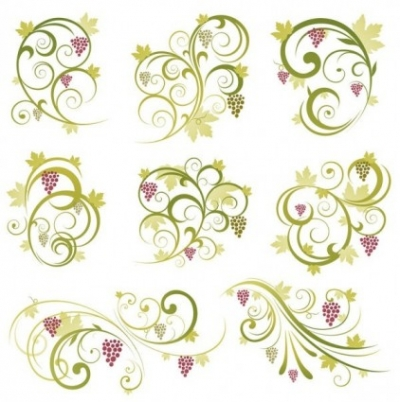Free vector Vector floral  Abstract Floral Vine Grape Ornament Vector