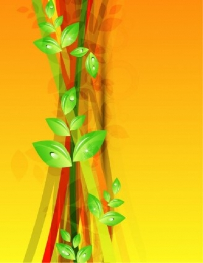 Free vector Vector floral  Abstract Green Floral Vector Background