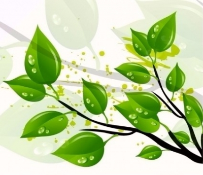 Free vector Vector abstract  Abstract Green Leaves Vector Illustration