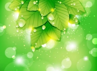 Free vector Vector background  Abstract Vector Leaf Background