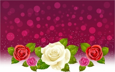 Background of red and white roses Free vector 4.30MB