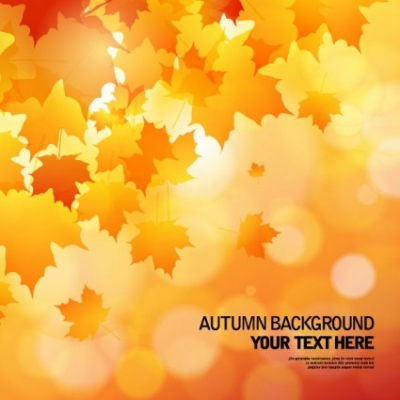 Free vector Vector background  beautiful autumn background 02 vector