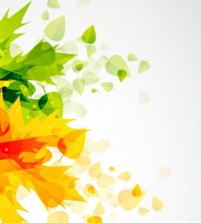 Free vector Vector background  beautiful autumn leaf background 01 vector