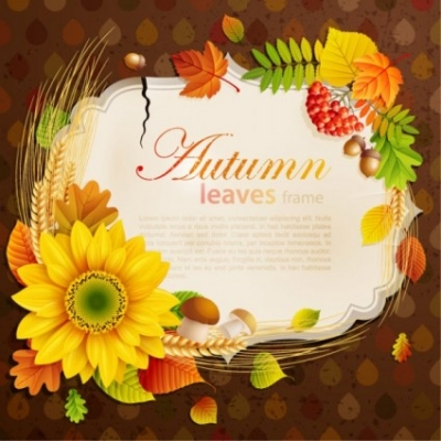 Free vector Vector background  beautiful autumn leaves frame background 06 vector