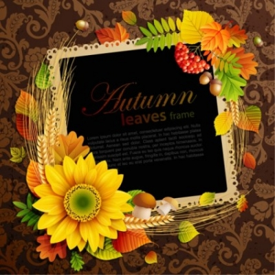 Free vector Vector background  beautiful autumn leaves frame background 08 vector