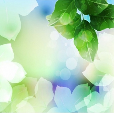 Free vector Vector background  Beautiful Green Leaf Background Vector Illustration