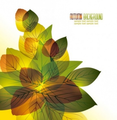 Free vector Vector misc  beautiful leaves card 03 vector