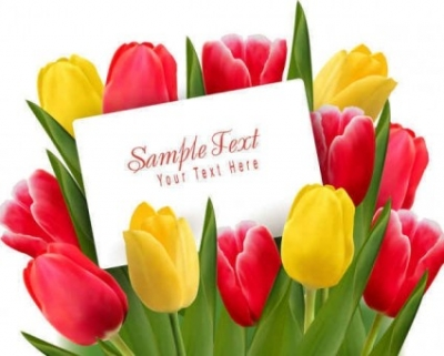 Free vector Vector background  Beautiful tulips flowers background