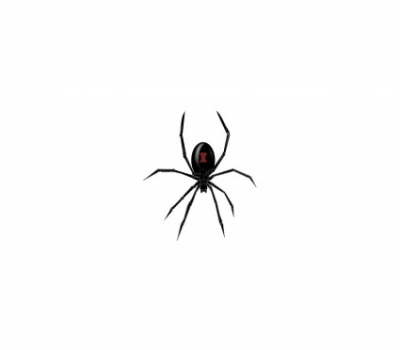 Free vector Vector clip art  Black Widow Spider