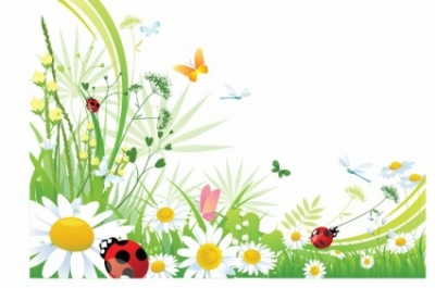 Free vector Vector background  Butterfly background