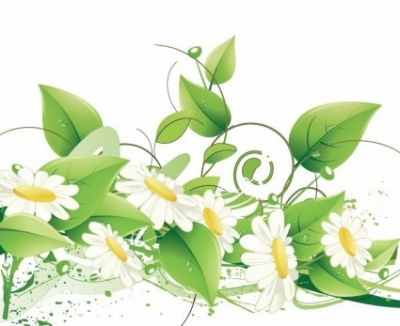 Free vector Vector flower  Elegant Floral Vector Background