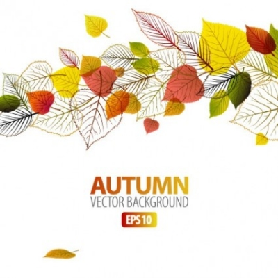 Free vector Vector background  exquisite leaf background 04 vector
