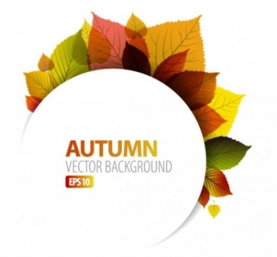 Free vector Vector background  exquisite leaf background 05 vector