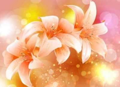 Free vector Vector background  Fancy Colorful Flowers Pink Background
