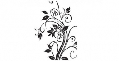 Free vector Vector flower  Floral free vector