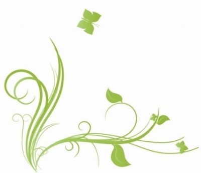 Free vector Vector floral  Floral with Butterfly Element Design Vector Illustration
