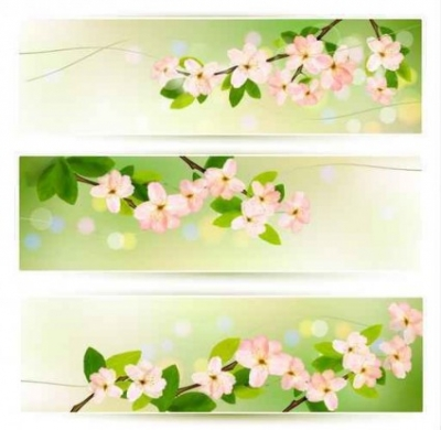 Free vector Vector background  flower green banner background