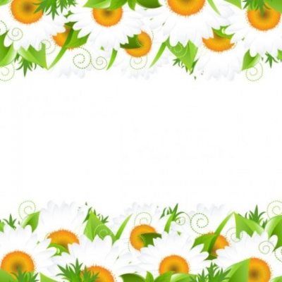 Free vector Vector flower  flowers petals lace background 01 vector
