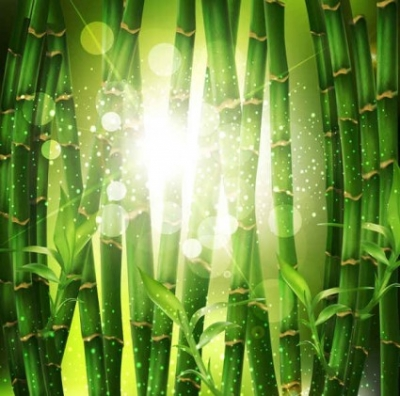 Free vector Vector background  Free Green leaf Vector background