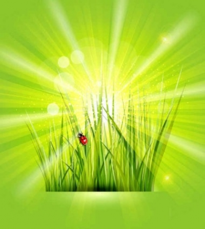 Free vector Vector background  Free Green vector Background