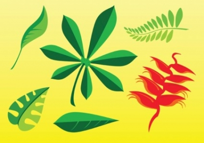 Free vector Vector misc  Free Plant Images
