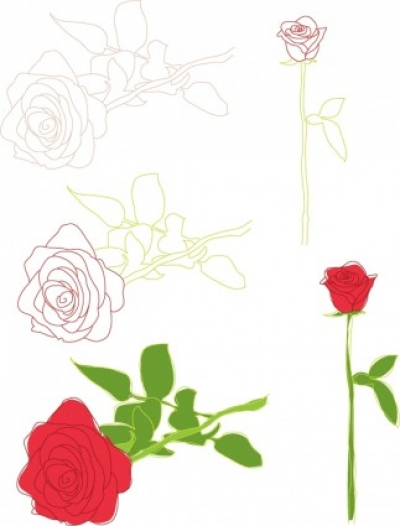 Free vector Vector flower free valentine vector roses