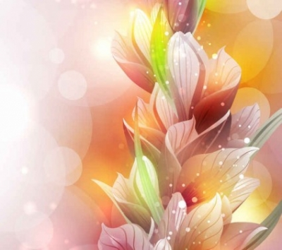 Free vector Vector background  Free Vector Spring Lily Flower Background