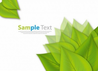 Free vector Vector background  Fresh Green Leaves ECO Vector Background