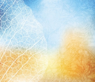 Free vector Vector background  gorgeous silhouette background 04 vector