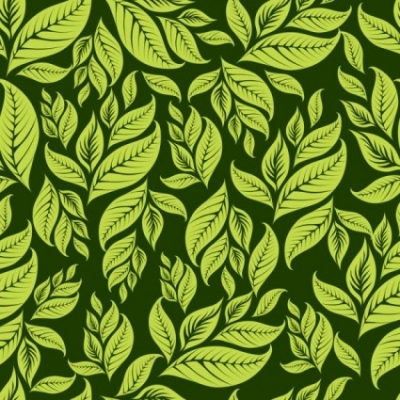 Free vector Vector background  green leaf background 03 vector