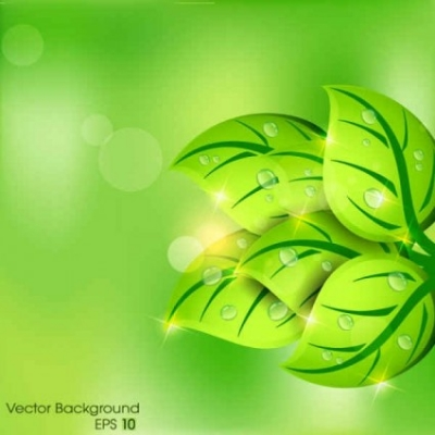 Free vector Vector background  Green leaf background