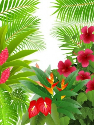 Free vector Vector background  green leaves theme background 02 vector