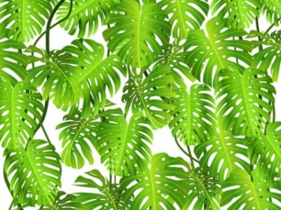 Free vector Vector background  green leaves theme background 03 vector