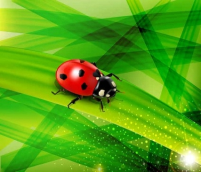 Free vector Vector background  green nature vector background