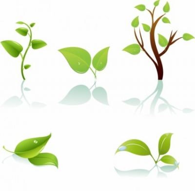 Free vector Vector plant  Green tree and leaf