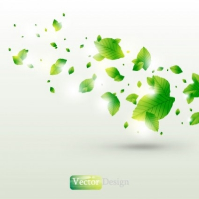 Free vector Vector background  halo leaves background 02 vector