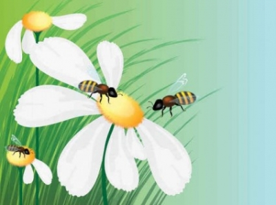 Free vector Vector background  Honey bees flowers background