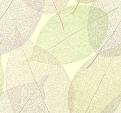 Free vector Vector background  Leaf Background