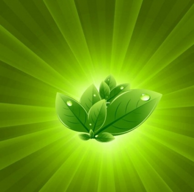 Free vector Vector abstract  Leaves with Green Light Burst Vector Abstract Background