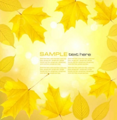 Free vector Vector background  maple leaf vector background