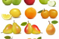 Free vector Vector misc  delicious fruit 02 vector