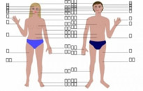 Free vector Vector clip art  Human body, man and woman, with numbers