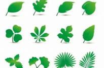 Free vector Vector plant  Leaf Set