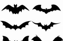 Free vector Vector misc  Set of bat silhouette