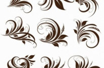 Free vector Vector floral  Vector Floral Elements for Design