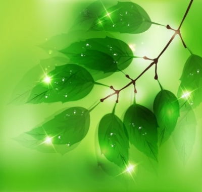 Free vector Vector background  Nature Background with Fresh Green Leaves
