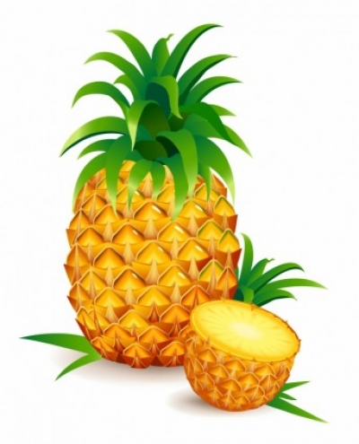 Free vector Vector trust to nature  One and a Half Pineapple