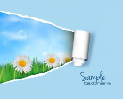 Free vector Vector background  pattern background cover 02 vector