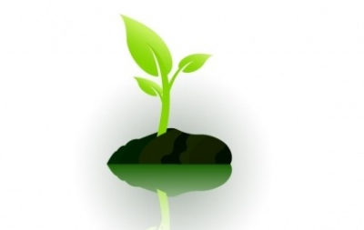 Free vector Vector misc  Plant
