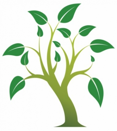 Free vector Vector plant  Simple tree